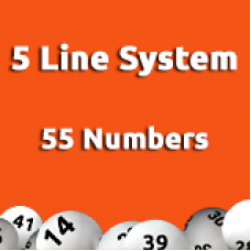 5 Line System - 55 Numbers