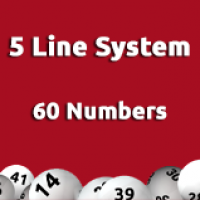 5 Line System - 60 Numbers