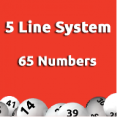 5 Line System - 65 Numbers